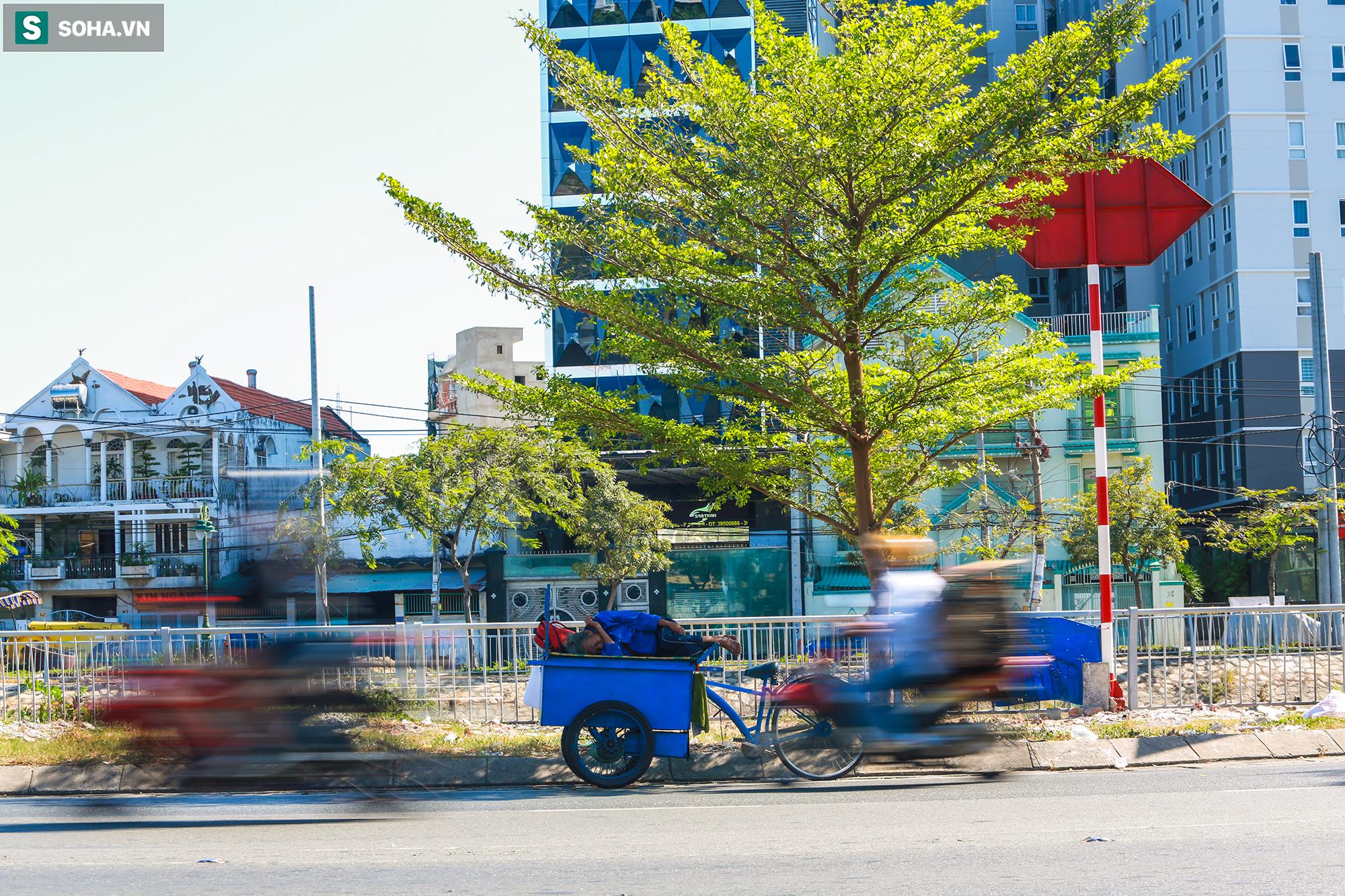 [ẢNH] Đường Sài Gòn nóng như thiêu, người dân vật vã tránh nóng ở góc cây, gầm cầu - Ảnh 14.