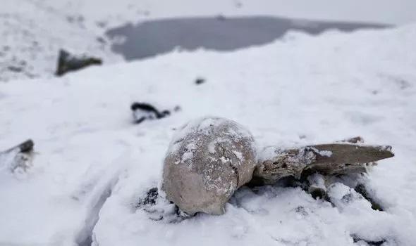 Rùng mình hồ nước cổ chứa đầy xương người giữa 'lưng chừng trời' khiến giới khoa học đau đầu - ảnh 1