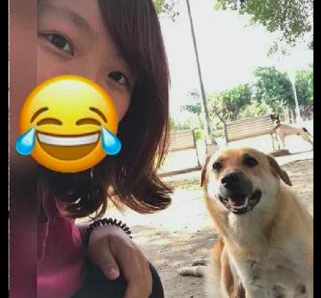 Bé gái thường xuyên bị 1 con chó đuổi sợ đến ám ảnh, 10 năm sau, chuyện không thể ngờ đến đã xảy ra - Ảnh 4.