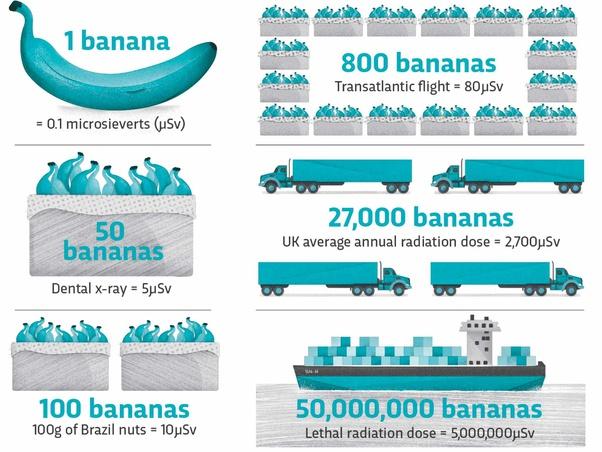 Cần ăn bao nhiêu quả chuối để cơ thể bạn bị nhiễm phóng xạ chết người? - Ảnh 1.