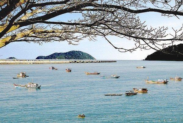 Chúa đảo Tuần Châu Đào Hồng Tuyển muốn xây sân bay, thành phố hải sản rộng 500ha ở Cà Mau - Ảnh 1.