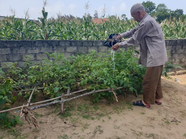 Hy hữu 5 chị em ruột ở Hà Tĩnh có tuổi thọ từ 85 đến 97 đều khỏe mạnh, minh mẫn - Ảnh 5.