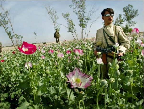 Nhìn lại toàn cảnh cuộc chiến đẫm máu dài nhất lịch sử Mỹ ở Afghanistan - Ảnh 10.