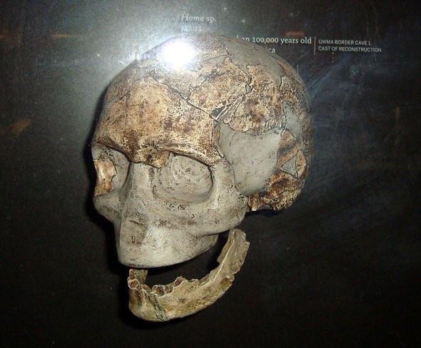 Phát hiện mới ở Tây Phi có thể thay đổi hoàn toàn lịch sử tiến hóa của loài người - Ảnh 3.