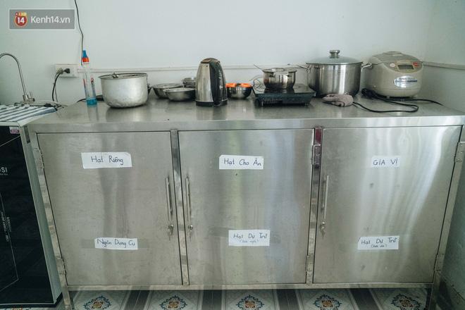 Bên trong phòng khám chữa bệnh, châm cứu miễn phí cho chó mèo ở Hà Nội: Ngoan, bà thương... - Ảnh 4.