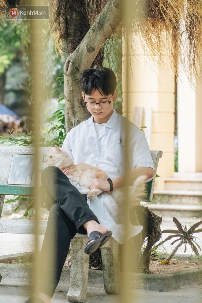 Bên trong phòng khám chữa bệnh, châm cứu miễn phí cho chó mèo ở Hà Nội: Ngoan, bà thương... - Ảnh 32.