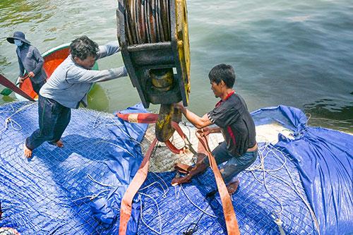 Một số hình ảnh đưa cá voi nặng hơn 4 tấn vào bờ - Ảnh 5.