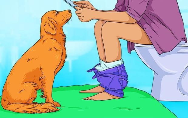 7 hành động kỳ quái của chú chó bạn nuôi và lý do đằng sau ai cũng cần biết - Ảnh 1.