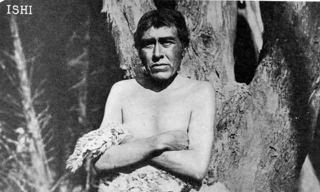 Bi kịch của Người da đỏ cuối cùng: Sinh ra trong rừng rậm, chết trong lồng kính viện bảo tàng, thi thể bị khoét mất não - Ảnh 2.