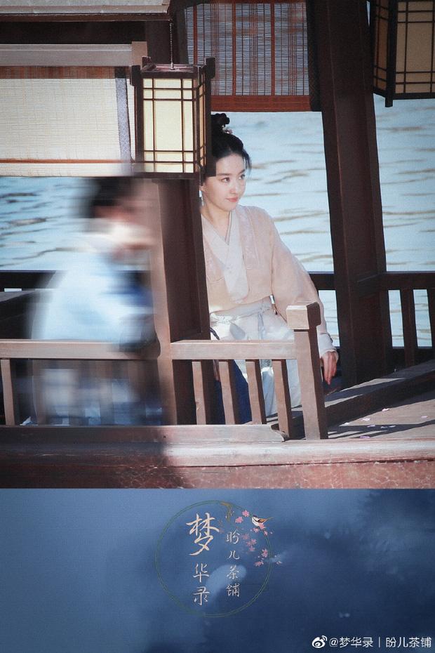 Chỉ với 1 bức ảnh, Lưu Diệc Phi khiến Cnet 'điên đảo': Visual kiều diễm đã trở lại, góc nghiêng đúng là thần thánh - ảnh 5