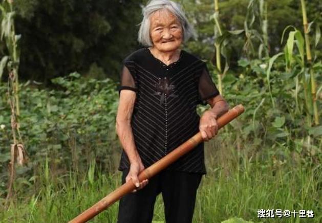 Bà lão đem thanh bảo kiếm gia truyền đi đốn củi, chuyên gia tiếc nuối: 3 tỷ đồng đổ xuống sông! - Ảnh 1.