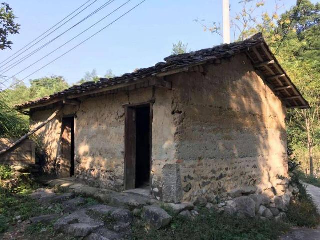 Cô gái 40 tuổi không kết hôn, chuyển nhà vào núi ở: Tiêu hết tiền tiết kiệm để sống ở nhà đất, sửa chuồng lợn thành phòng làm việc - Ảnh 4.