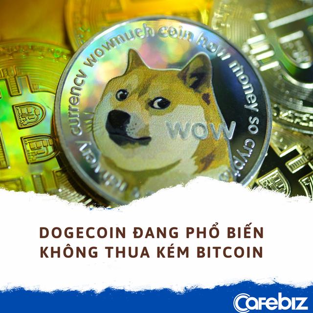 Làm giàu không khó: Lời gấp 6.580 lần khi mua 1.000 USD Dogecoin vào đầu năm nay - Ảnh 2.