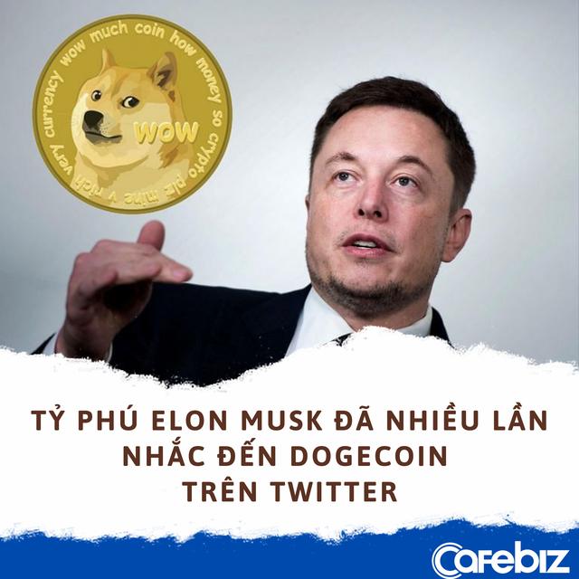 Làm giàu không khó: Lời gấp 6.580 lần khi mua 1.000 USD Dogecoin vào đầu năm nay - Ảnh 3.
