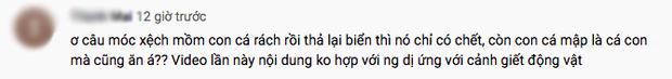 Tranh cãi việc nhà Quỳnh Trần JP ra biển câu cá mập con để ăn, cảnh máu me cũng được đưa ngay lên video - Ảnh 11.