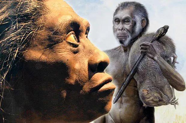 Tại sao những loài động vật trên các hòn đảo luôn kỳ dị hơn những người anh em trên đất liền? - ảnh 11