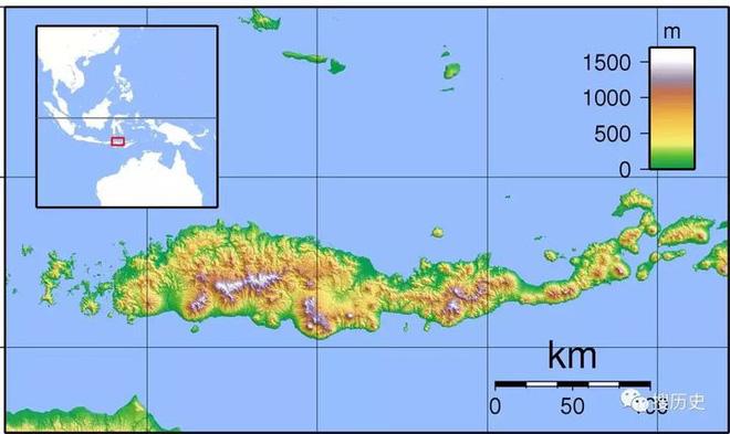 Tại sao những loài động vật trên các hòn đảo luôn kỳ dị hơn những người anh em trên đất liền? - ảnh 6