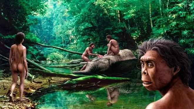 Tại sao những loài động vật trên các hòn đảo luôn kỳ dị hơn những người anh em trên đất liền? - ảnh 10