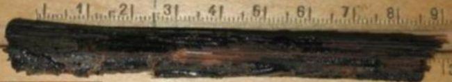 Kinh ngạc vật thể lạ 'cắt ngang' hộp sọ xác ướp, chuyên gia gắp ra qua đường mũi 002
