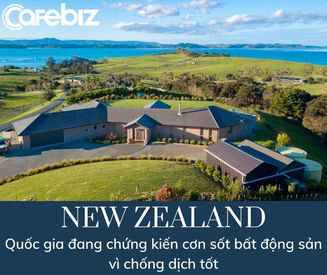 Sốt đất không tưởng ở New Zealand: Mất 10 tháng, gặp 100 người, xem 60 ngôi nhà mới chốt được hợp đồng mua bán - Ảnh 1.