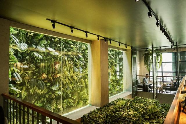 Chuỗi Café Amazon lớn nhất Thái Lan đổ bộ Việt Nam với 5 cửa hàng: Menu dành riêng cho khách Việt có cà phê đen, bạc xỉu đá, trà đào, trà vải... - Ảnh 4.