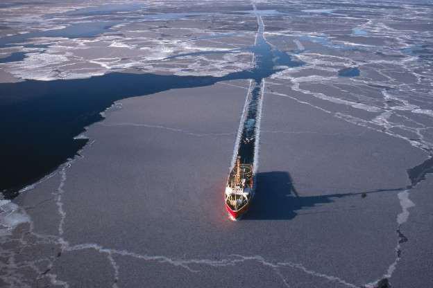15 sự thật về Bắc Cực, nơi bí ẩn nhất Trái đất - Ảnh 5.