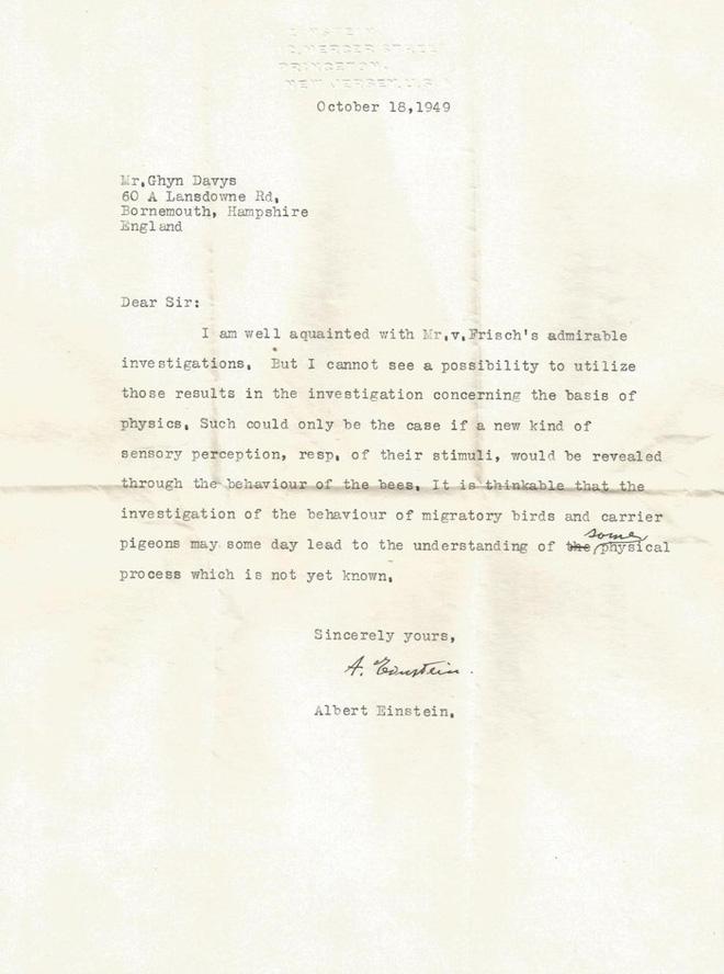 Một bức thư thất lạc của Einstein vừa được tìm thấy, và nó tiết lộ những dự đoán của ông về siêu giác quan của động vật - Ảnh 1.