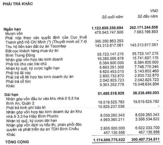 Thuduc House (TDH): Đã tạm nộp 396 tỷ đồng truy thu thuế, vẫn đang đánh giá và sẽ điều chỉnh khi có quyết định sau cùng của vụ kiện - Ảnh 1.