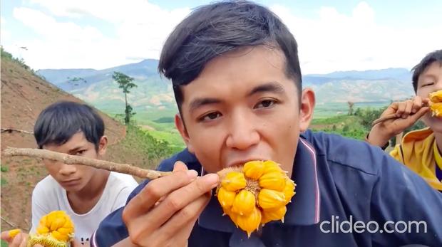 Việt Nam có loại quả mọc dại bán với giá hàng trăm nghìn 1 ký, hương vị cực độc lạ và quá trình hái không dễ tí nào - Ảnh 4.