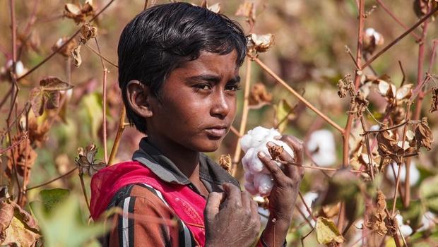 Mỗi phút có 2 người chết: Nếu Ấn Độ không được cứu, có ít nhất 6 vấn đề ảnh hưởng xấu đến toàn thế giới - Ảnh 7.