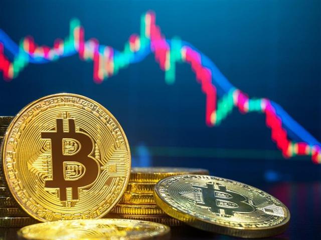 Sự giống nhau kỳ lạ giữa Bitcoin và xác con cá mập nằm trong bể foocmôn - Ảnh 3.