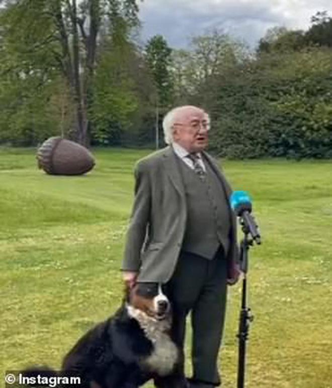 Chó cưng của Tổng thống Ireland càn quét MXH vì màn phá rối chủ đáng yêu hết sức ngay trên sóng trực tiếp - Ảnh 4.