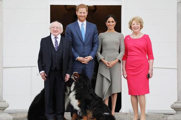 Chó cưng của Tổng thống Ireland càn quét MXH vì màn phá rối chủ đáng yêu hết sức ngay trên sóng trực tiếp - Ảnh 7.