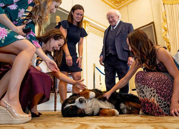 Chó cưng của Tổng thống Ireland càn quét MXH vì màn phá rối chủ đáng yêu hết sức ngay trên sóng trực tiếp - Ảnh 8.