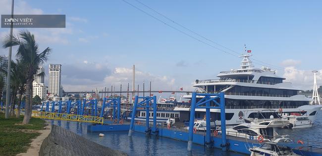 Đóng cửa vịnh Hạ Long: Những con tàu triệu đô tiếp tục mắc cạn - Ảnh 1.