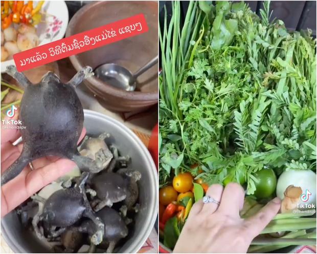 Người Thái sở hữu 1 món siêu kinh dị, có người vừa thấy đã ngất xỉu tại chỗ nhưng ở Việt Nam cũng ăn con vật này? - Ảnh 2.