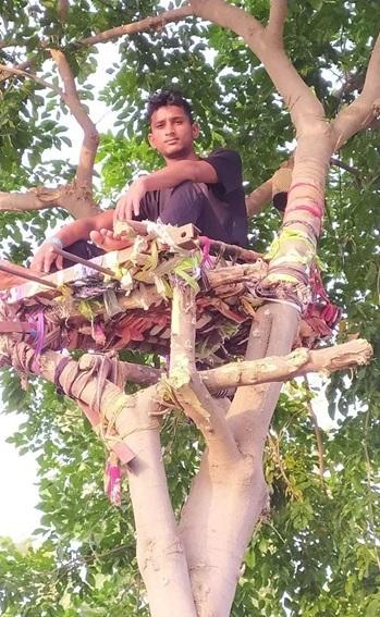 Ấn Độ: Nhiều bệnh nhân Covid-19 tự cách ly hàng chục ngày trên cây như trong phim Tarzan - ảnh 2