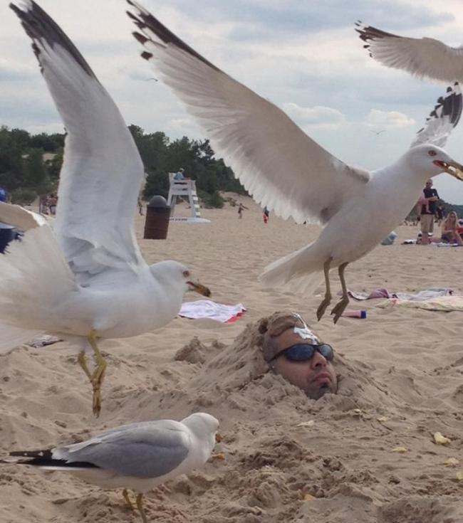 Giật mình khi vô tình bắt gặp hình ảnh oái oăm trên bãi biển - Ảnh 9.