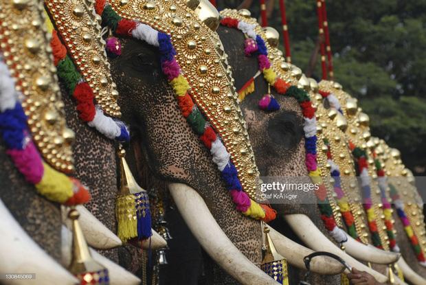 16 thứ độc nhất vô nhị chỉ có thể bắt gặp tại đất nước tỷ dân Ấn Độ: Từ bức tượng cao nhất thế giới đến Đồi Nam Châm hút xe lên dốc - Ảnh 9.