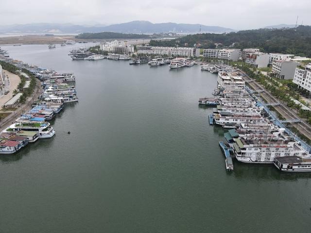 Dàn tàu du lịch hơn 500 chiếc trị giá hàng nghìn tỷ tại Hạ Long đắp chiếu, doanh nghiệp cầu cứu Thủ tướng - Ảnh 12.