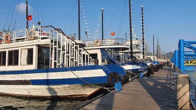 Dàn tàu du lịch hơn 500 chiếc trị giá hàng nghìn tỷ tại Hạ Long đắp chiếu, doanh nghiệp cầu cứu Thủ tướng - Ảnh 5.