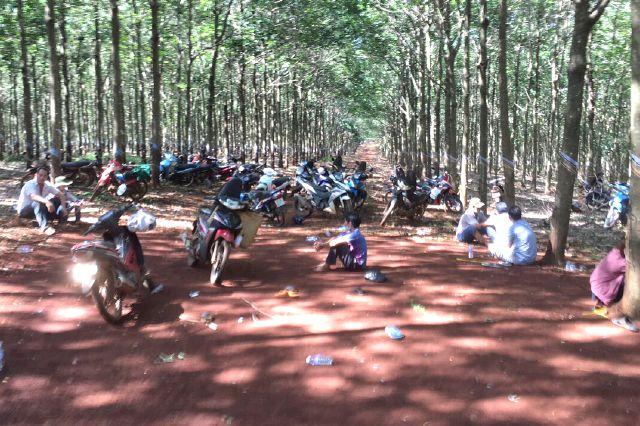 Cảnh sát hóa thân công nhân, đi vòng hơn 10km trong rừng để phá nhóm đánh bạc trong lô cao su - Ảnh 2.