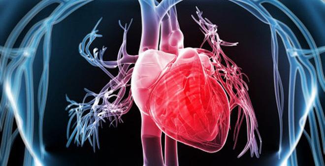 GS Trương Quang Bình cảnh báo: Tần số tim cao sẽ có nguy cơ tử vong do các biến cố tim mạch - Ảnh 1.