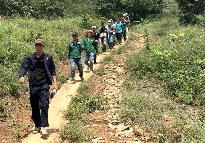 Hàng chục đối tượng tổ chức đá gà ăn tiền trong rừng cao su giữa mùa dịch - Ảnh 1.