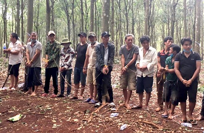 Hàng chục đối tượng tổ chức đá gà ăn tiền trong rừng cao su giữa mùa dịch - Ảnh 2.