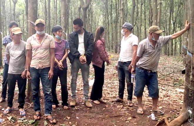 Hàng chục đối tượng tổ chức đá gà ăn tiền trong rừng cao su giữa mùa dịch - Ảnh 3.
