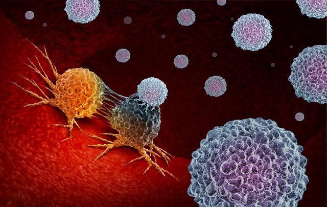 Chuyên gia: Dù hiệu quả vaccine COVID-19 giảm theo thời gian, hệ miễn dịch vẫn có vũ khí chống lại virus - Ảnh 3.
