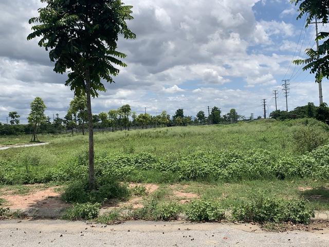 """Hà Nội xuất hiện khu vực có giá đất """"nóng bỏng tay"""" bất chấp dịch bệnh - Ảnh 3."""