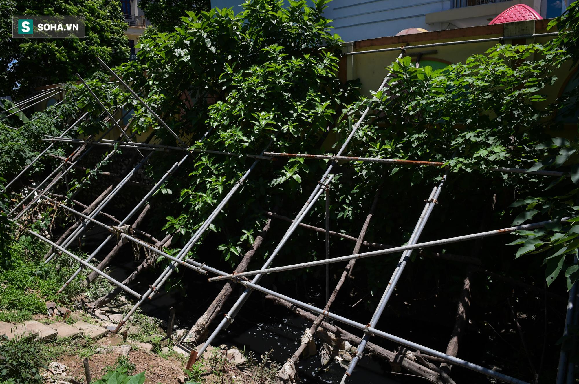 Đại dự án 7.000 tỷ đồng chống ngập cho 6 quận huyện phía Tây TP Hà Nội chậm tiến độ, ngập ngụa trong rác - Ảnh 14.