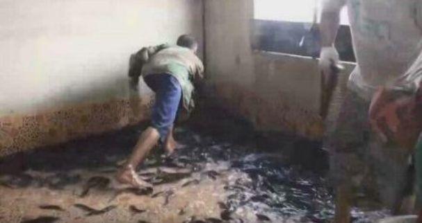 Tầng 1 bị nhấn chìm trong cơn lũ, sau khi nước rút, cả gia đình không giấu nổi vui mừng khi nhìn xuống sàn nhà - Ảnh 3.